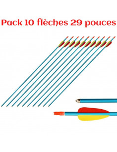 Pack of 10 arrows 29 inches (74cm), aluminum, blue