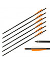 6 Carbon Bolts 20 inches (51cm)